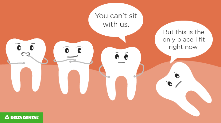 Wisdom tooth, you can sit with us