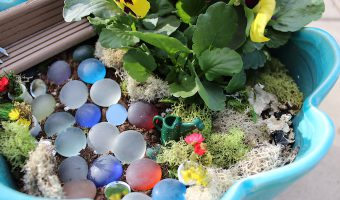 Fairy Garden Images