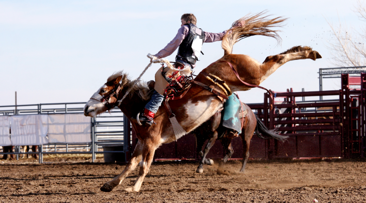 Saddle up! It's rodeo season and Wyoming has some of the best of our official state sport. Whether it's barrel racing, calf roping, or bull riding, wearing a mouthguard lessens the chance of oral injuries.