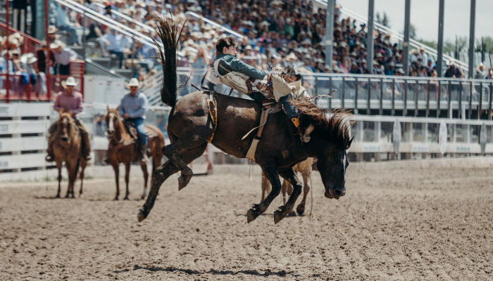 """This is not a typical year at Frontier Park. Cheyenne Frontier Days (CFD) is celebrating its 125th year. That's why they call it The Daddy of 'em All! Cheyenne held its first Frontier Days celebration in 1897. It was a one-day cowboy roundup. Since then, it has grown into a ten-day extravaganza filled with """"food, fun, and entertainment."""""""