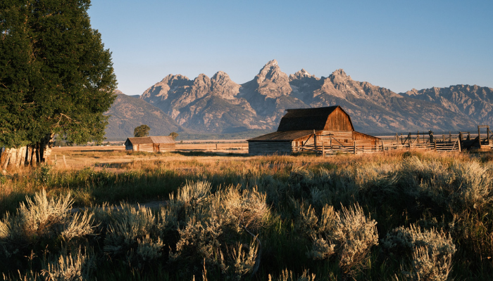 Wyoming (Forever West) is a hidden gem in the United States. From the beautiful scenery to the kind people that call this magnificent state home, there are endless possibilities of things to keep you occupied this summer.
